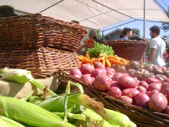 farmers market red potatoes