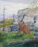 Grizzly 20x16 Canvas