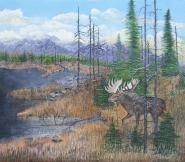 Northern Wilds 14x16 Canvas