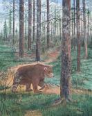 Bear On Trail 20x16 Canvas