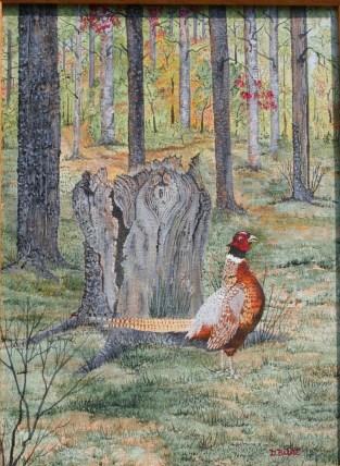 Pheasant 16x12 Canvas