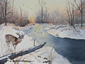 Canadian Wilderness 16x20 Canvas