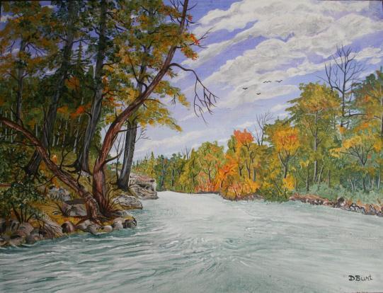Rhythm Of The River 12x15 Canvas