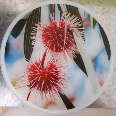 beautiful pin cushion chopping board