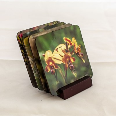 display of 4 hardboard coaster with photograph of wildflower