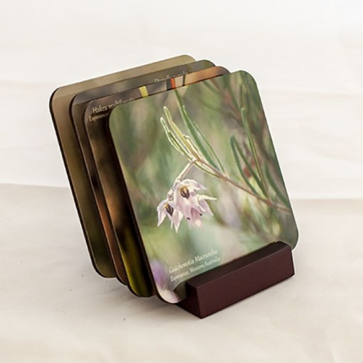 display coaster set of wildflower onto a wood stand