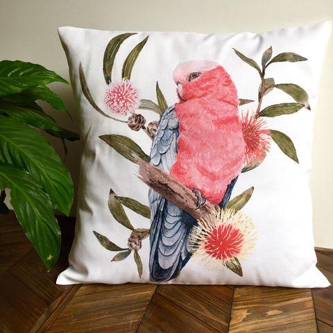 Pink galah cushion cover