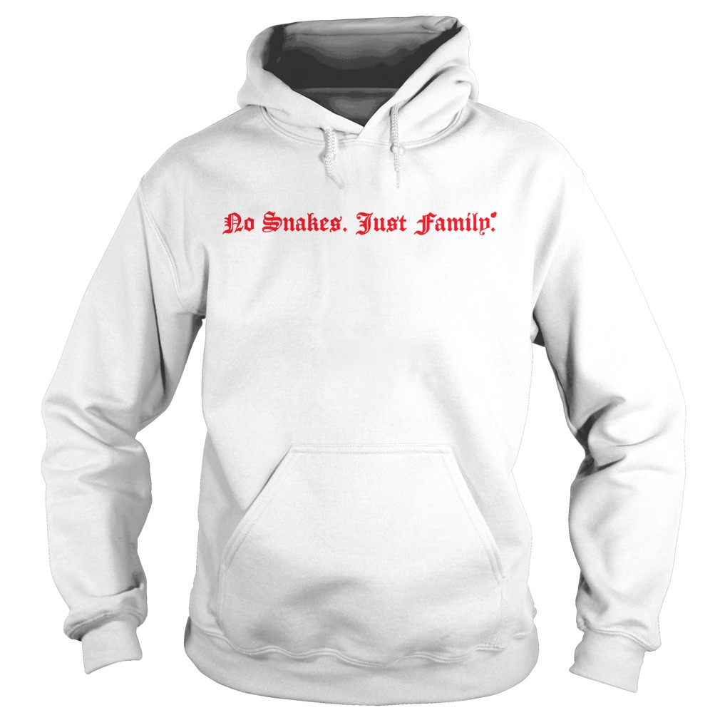 No snakes just family Hoodie
