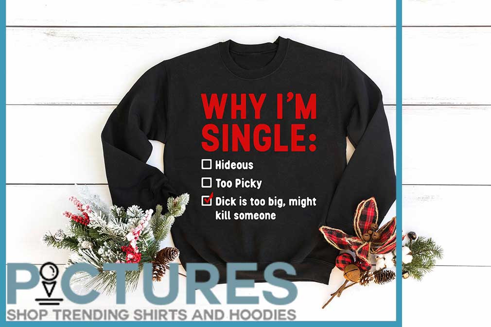 Why I'm Single Hideous Too Picky Dick Is Too Big, Might Kill Someone Shirt