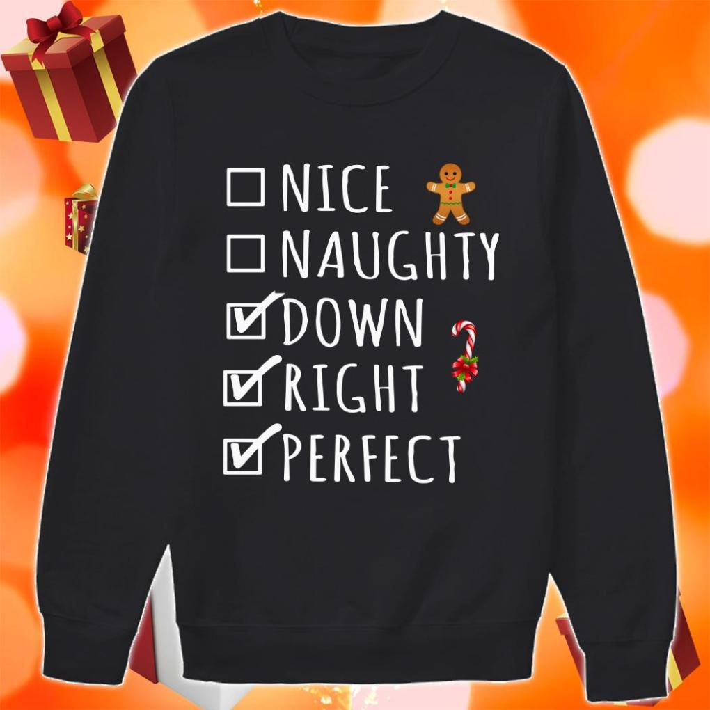 Nice Naughty Down Right Perfect sweater