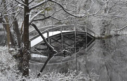 bridge over cherry creek 11-9-2018 8-24-04 AM