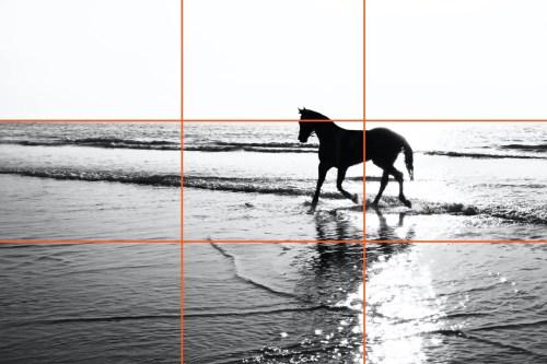 composizione paesaggio