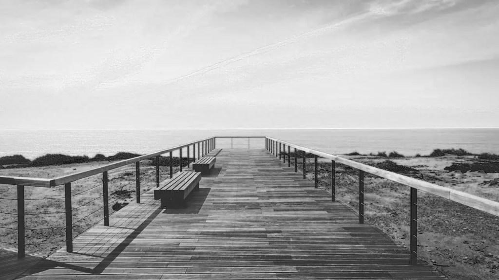 Paesaggio marino bianco e nero filtro blu