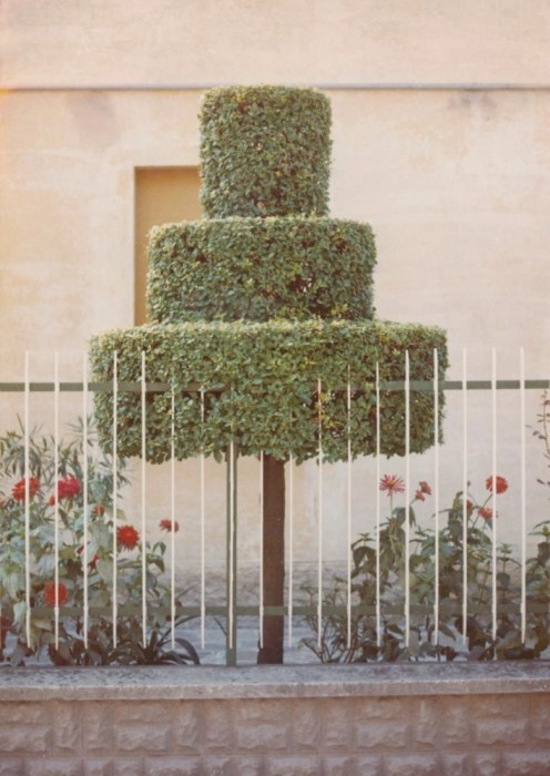 Fotografia di strada - Luigi Ghirri, Colazione sull'erba