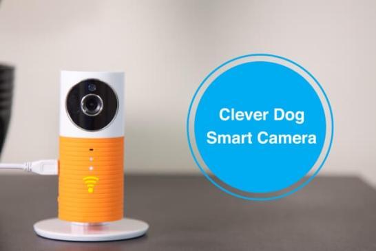Clever Dog Smart Camera(クレバードッグ・スマートカメラ)