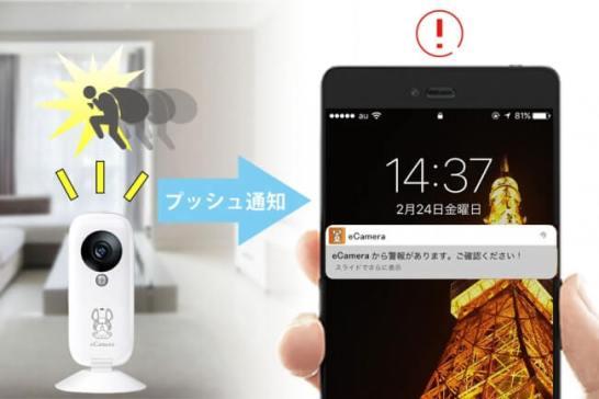 ペットも見守れるホームセキュリティIoTカメラ「eCamera」