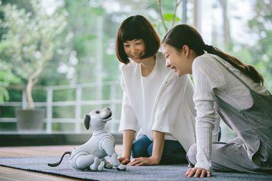 """エンタテインメントロボット""""aibo""""(アイボ)を発売"""