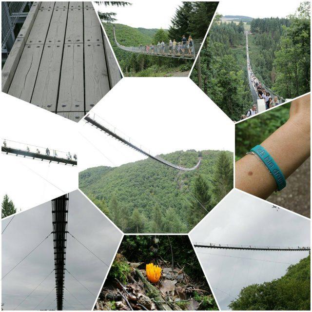Hängeseilbrücke Geierlay #ausflugtipp #hunsrück #erlebnis