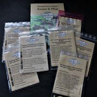 Neue Exoten für meinen Garten dank Magic Garden Seeds #pflanzenaussamen #selbstgezogen #samen