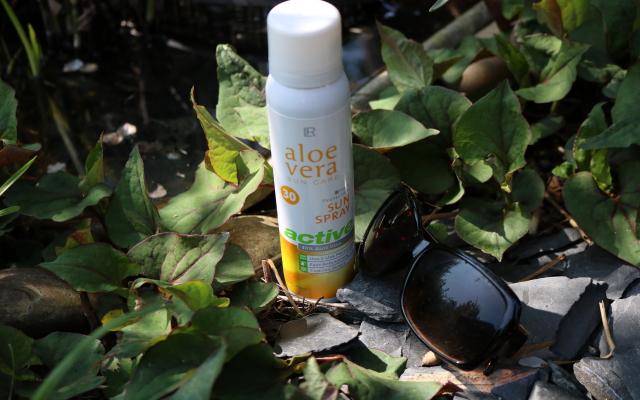 Aloe Vera – eine Wohltag an heißen Tagen für meine Haut