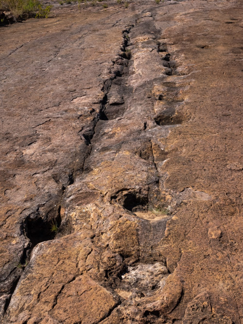 Dinosaur footprints in Torotoro National Park, Bolivia