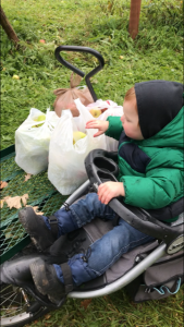 baby in strolelr with apple bags on wagon