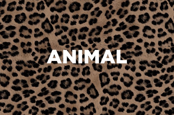 shop-animal@2x