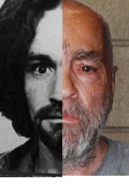 Manson Manson Composit 2