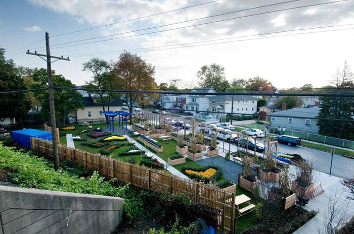 50cent-garden