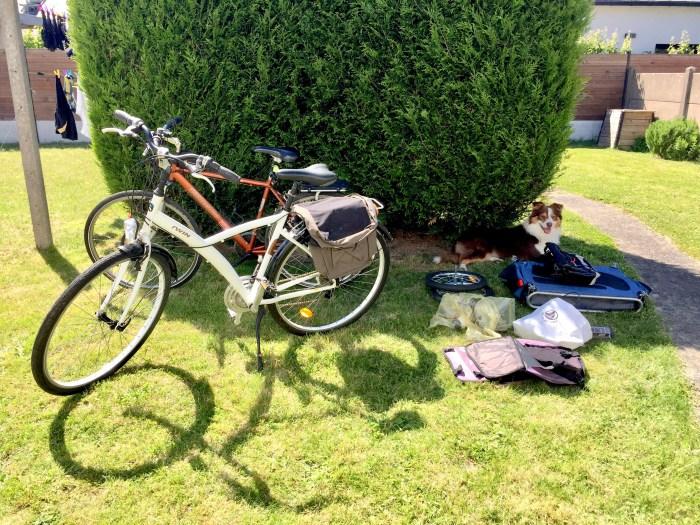 Préparation voyage vélo avec un chien