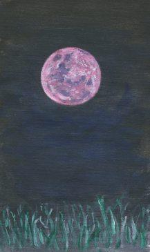 Moon paintings - Piefingers
