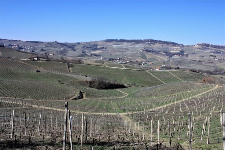 View La Morra Piemonte