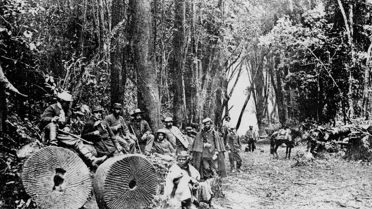 El Mercurio provocó genocidio mapuche