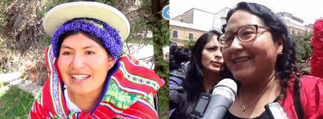 Plurinacionalidad y proceso constituyente: diálogo boliviano – chileno en torno a la experiencia de mujeres líderes