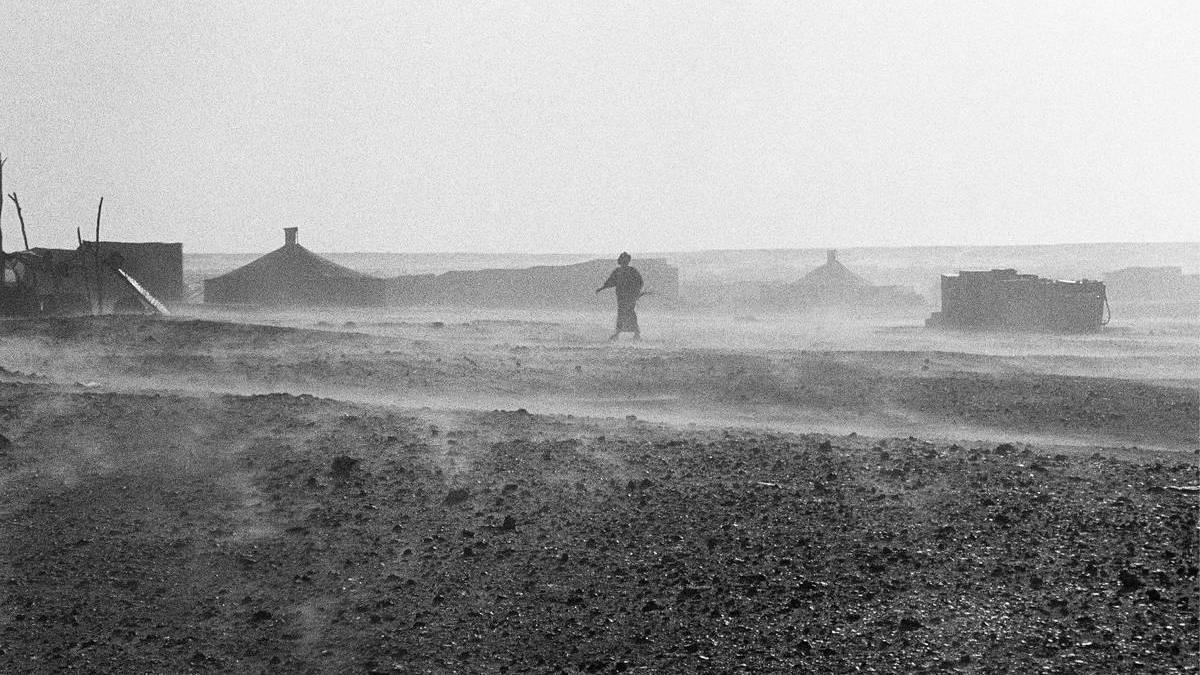 Arena en los ojos. La lucha del pueblo Saharaui por su independencia