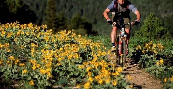 Consejos para evitar la alergia primaveral c