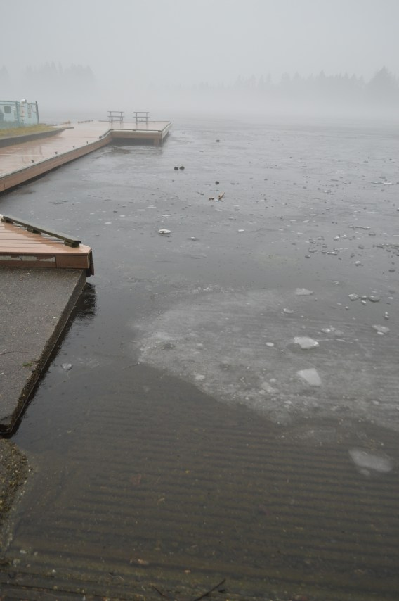Ice chunks and rocks around the fishing dock on Spanaway Lake. The edges are beginning to melt.