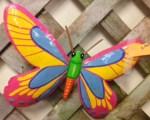 Betty Butterfly