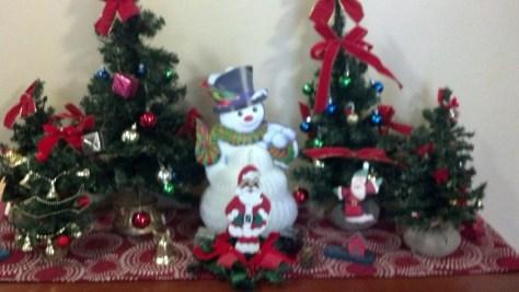 christmas_122513_04