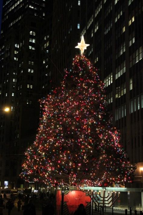 christmas_122513_39