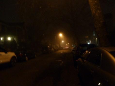 foggy_011514_08
