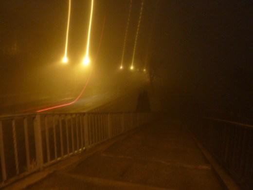 foggy_011514_16