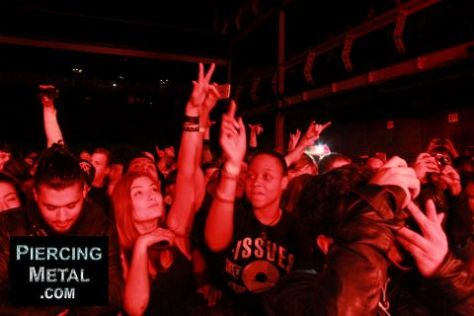 fans at papa roach seether show, the fans