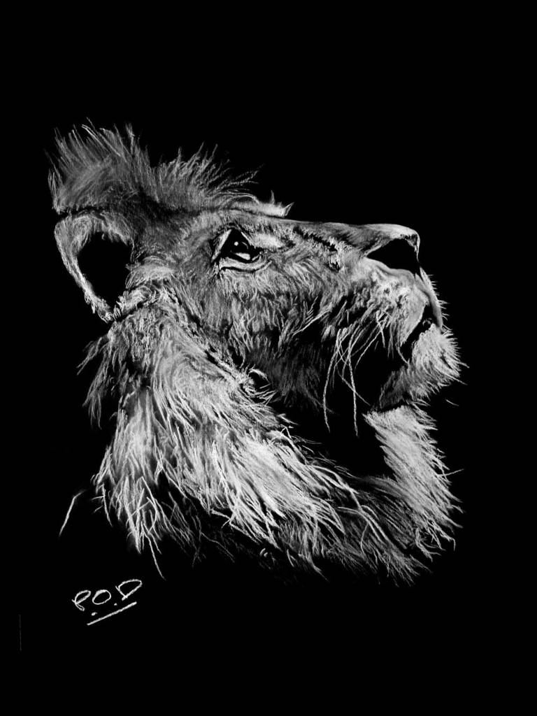 Peinture moderne de lion au pastel sec lion painting