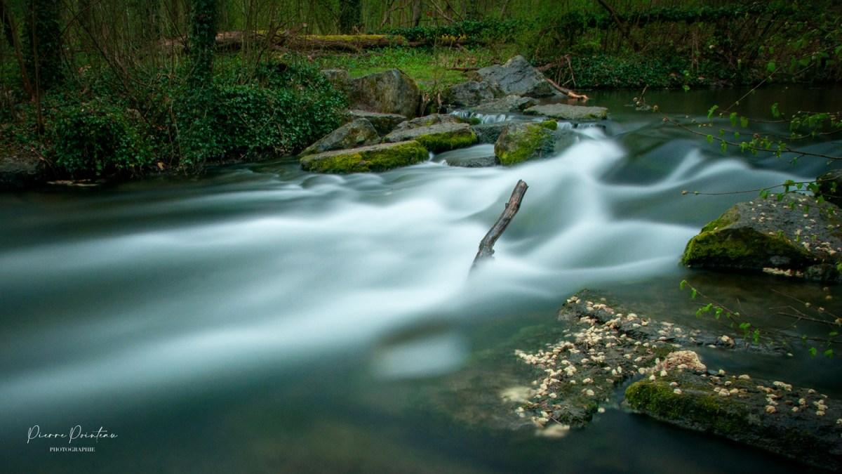 Photographie de la cascade de la forêt de la Robertsau, à Strasbourg.