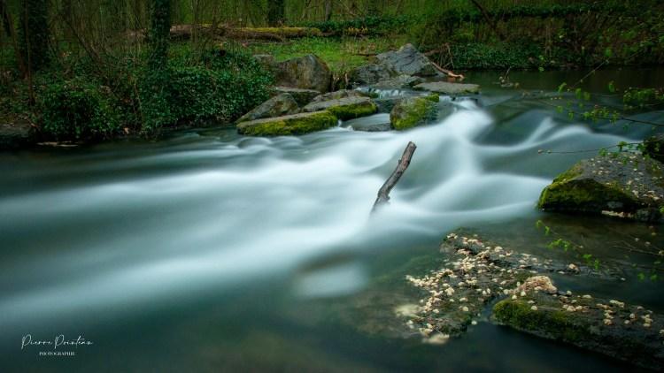 La cascade de la forêt de la Robertsau.