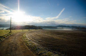 Warm Morning - Ref. B11