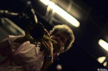 black_trumpet_2014_022