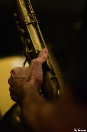 black_trumpet_2014_026