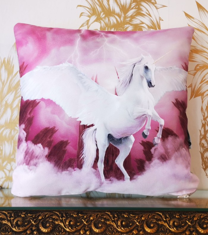 pierrette-valium-coussin-pink-thunder-face